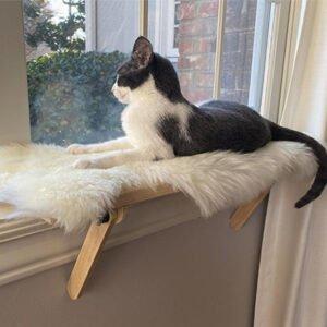 Design House Boutique PurrchPerfect Window Sill Cat Perch