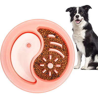 LEACOOLKEY Slow Feeding 2-in-1 Food and Water Bowl