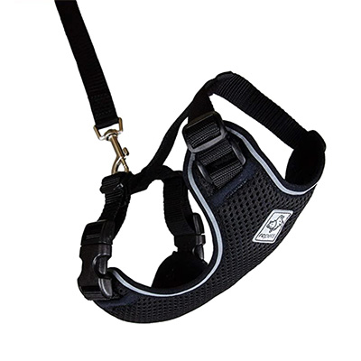 RC Pet Products Primary Collection Adventure Kitty Harness