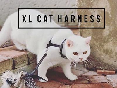 Surfer Cat Mav Escape-Proof Extra-Large Cat Harness